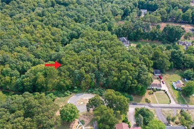 36,48 Raymond Road, Glastonbury, CT 06073 (MLS #170438455) :: Michael & Associates Premium Properties   MAPP TEAM