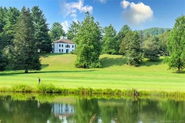 94 Salmon Kill Road, Salisbury, CT 06039 (MLS #170440356) :: Chris O. Buswell, dba Options Real Estate