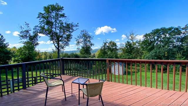 10 Fordyce Court, New Milford, CT 06776 (MLS #170441865) :: Chris O. Buswell, dba Options Real Estate