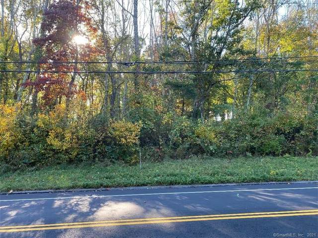 489 Old Colchester Road, Salem, CT 06420 (MLS #170443824) :: Next Level Group