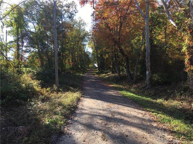 70 Muckle Road, New Hartford, CT 06057 (MLS #170445668) :: Michael & Associates Premium Properties | MAPP TEAM