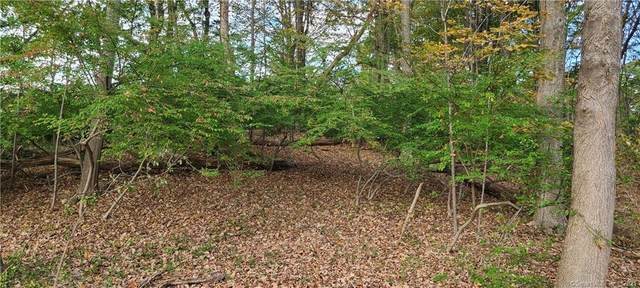 TBD Cannondale Road, Weston, CT 06883 (MLS #170447003) :: Linda Edelwich Company Agents on Main