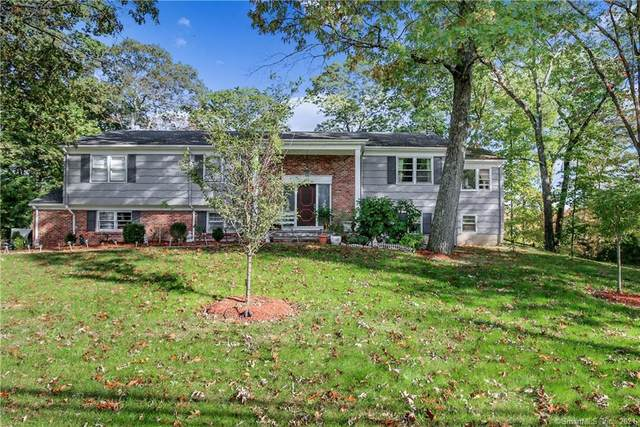 264 Dundee Road, Stamford, CT 06903 (MLS #170447901) :: Carbutti & Co Realtors