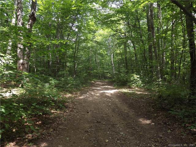 007 Oconnell Road Extension, East Haddam, CT 06423 (MLS #170448195) :: Carbutti & Co Realtors