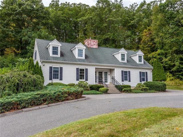 315 Litchfield Road, New Milford, CT 06776 (MLS #170016520) :: Spectrum Real Estate Consultants