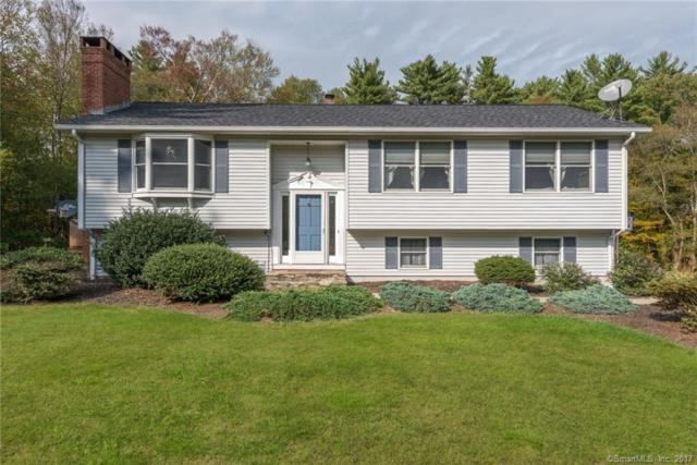 20 Messier Road, Thompson, CT 06255 (MLS #170020260) :: Anytime Realty