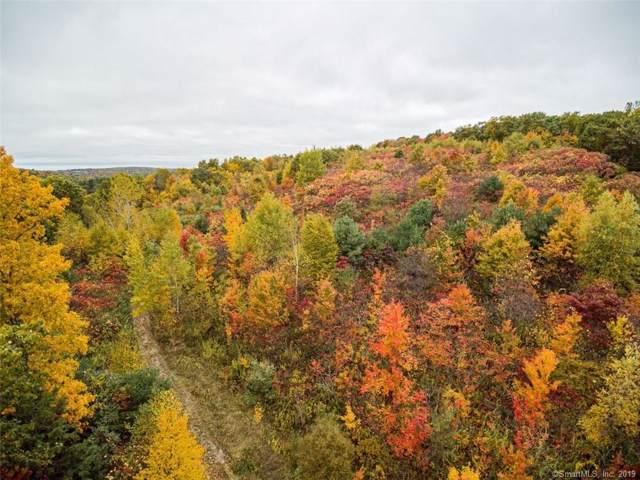 33 Moose Horn Mountain, Granby, CT 06090 (MLS #170036010) :: Mark Boyland Real Estate Team