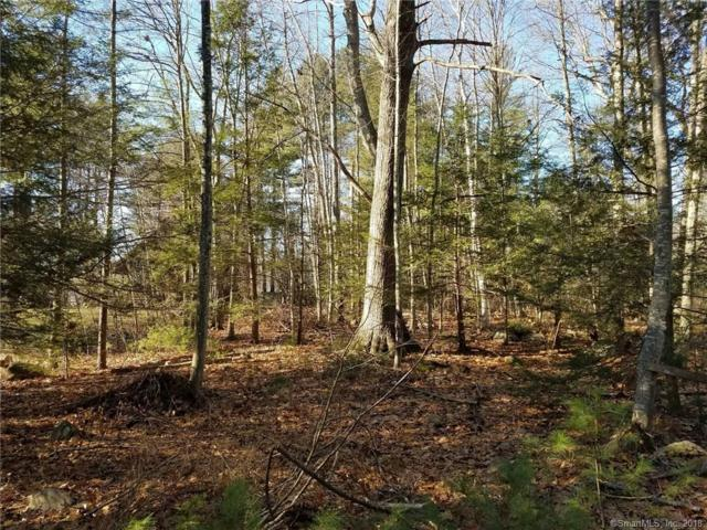 0 Playground Drive, Woodstock, CT 06281 (MLS #170037447) :: Carbutti & Co Realtors