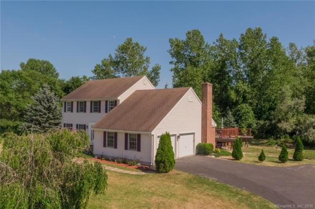 19 Skyview Drive, Colchester, CT 06415 (MLS #170107986) :: Carbutti & Co Realtors
