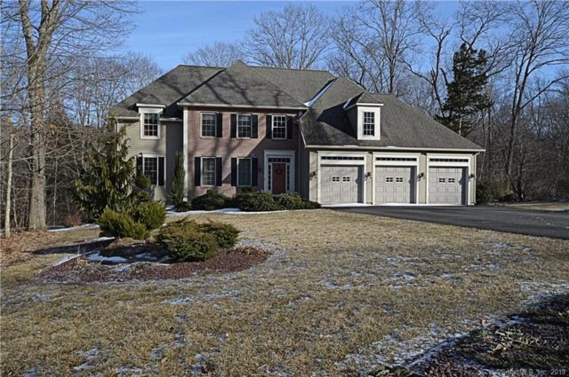 44 Nutmeg Circle, Colchester, CT 06415 (MLS #170153213) :: Anytime Realty