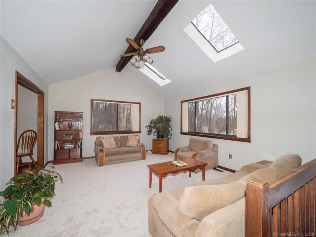16 Oakhill Avenue, Norwalk, CT 06854 (MLS #170171890) :: Hergenrother Realty Group Connecticut