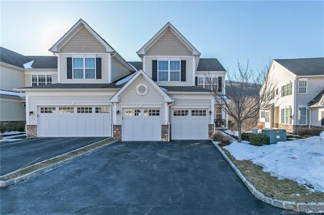 47 Hidden Brook Trail, Bethel, CT 06801 (MLS #170174315) :: The Higgins Group - The CT Home Finder