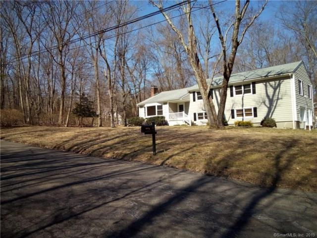 19 Pumpkin Lane, Norwalk, CT 06851 (MLS #170174414) :: Carbutti & Co Realtors