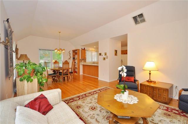 4 Red River Lane #4, Newtown, CT 06470 (MLS #170200227) :: Mark Boyland Real Estate Team