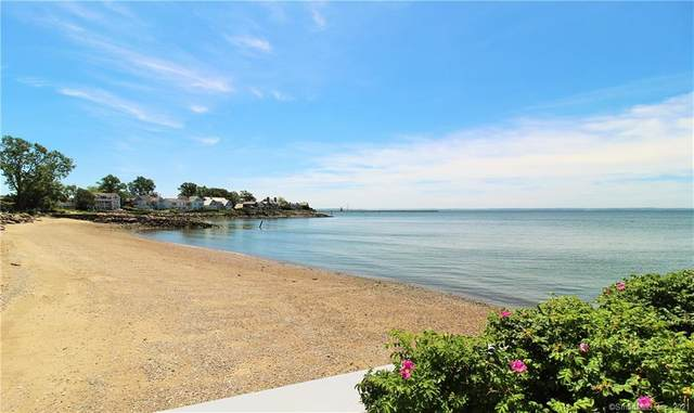 87 Dolphin Cove Quay, Stamford, CT 06902 (MLS #170202369) :: Forever Homes Real Estate, LLC