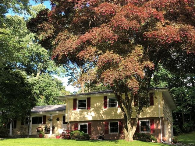 831 Rail Fence Road, Orange, CT 06477 (MLS #170206746) :: Carbutti & Co Realtors