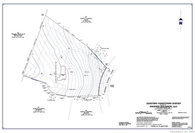 388L Spring Water Lane, New Canaan, CT 06840 (MLS #170235760) :: Michael & Associates Premium Properties   MAPP TEAM