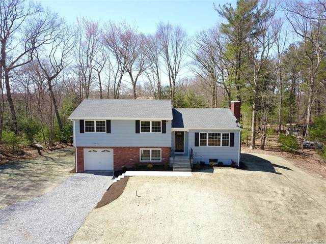 113 Lane Street, Shelton, CT 06484 (MLS #170270280) :: Team Feola & Lanzante | Keller Williams Trumbull