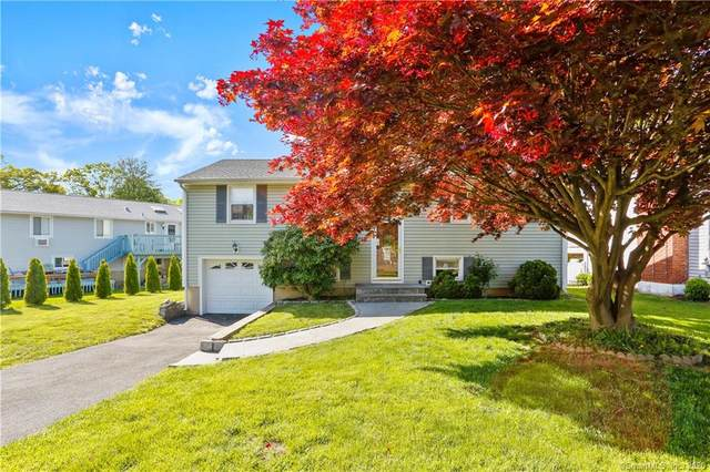 31 Donohue Drive, Norwalk, CT 06851 (MLS #170297090) :: Carbutti & Co Realtors