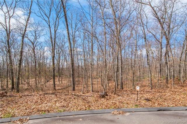 201 Orchard Avenue, Woodbury, CT 06798 (MLS #170309693) :: The Higgins Group - The CT Home Finder