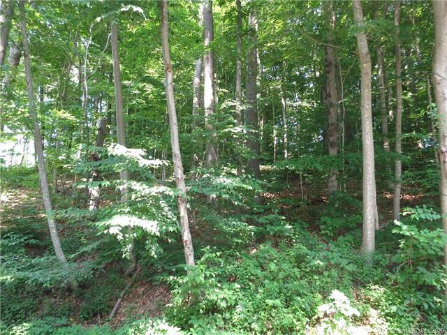 3 Bashan Road, East Haddam, CT 06423 (MLS #170311957) :: The Higgins Group - The CT Home Finder