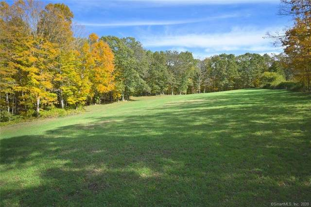 30-5A Burrows Hill Road, Hebron, CT 06248 (MLS #170311994) :: The Higgins Group - The CT Home Finder