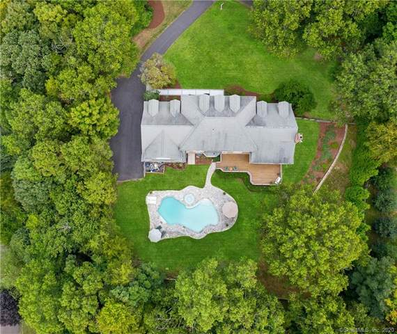 146 Sherwood Farm Road, Fairfield, CT 06824 (MLS #170334443) :: Team Phoenix
