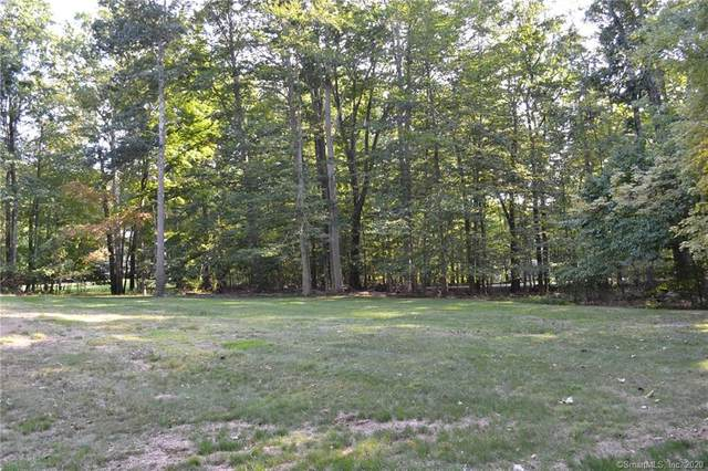 66 Beardsley Road, New Milford, CT 06776 (MLS #170339178) :: The Higgins Group - The CT Home Finder