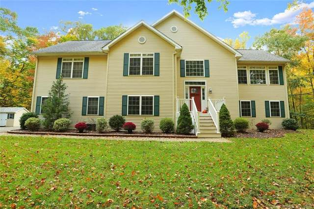 46 Brownson Drive, Shelton, CT 06484 (MLS #170348105) :: Galatas Real Estate Group