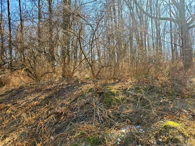 Lot54-8 Squash Hollow Road, New Milford, CT 06776 (MLS #170366850) :: Next Level Group