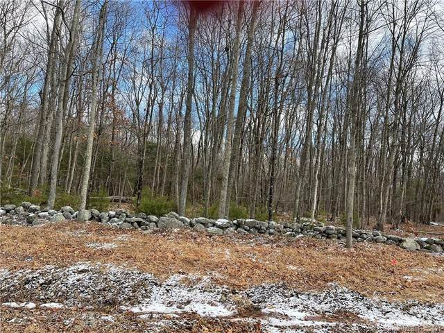 13-1 Ojala Road, Woodstock, CT 06281 (MLS #170367123) :: Around Town Real Estate Team