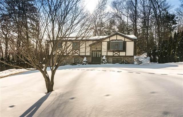 14 Raquel Drive, Danbury, CT 06811 (MLS #170368975) :: Around Town Real Estate Team