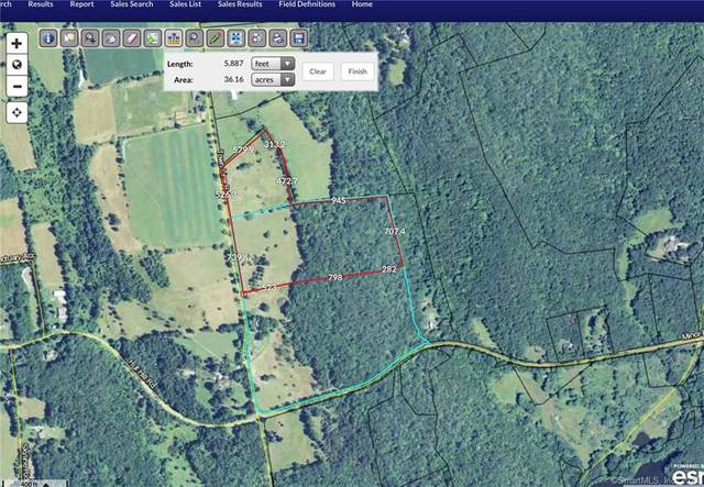 110 Town Line Road, Roxbury, CT 06783 (MLS #170372704) :: Spectrum Real Estate Consultants
