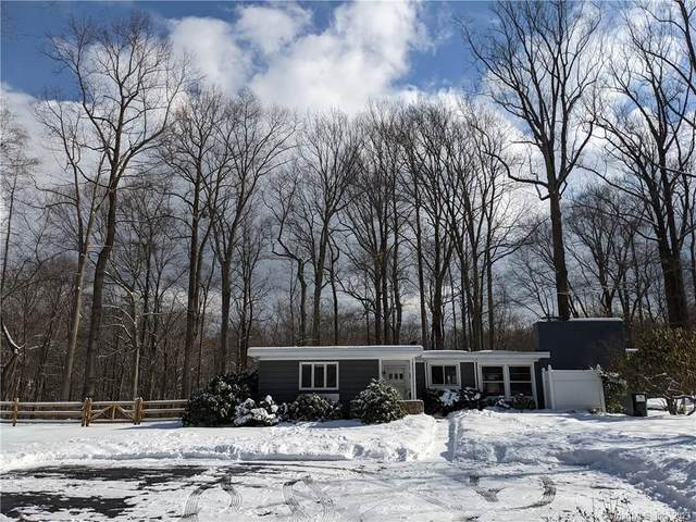 115 Seir Hill Road, Wilton, CT 06897 (MLS #170372720) :: Tim Dent Real Estate Group