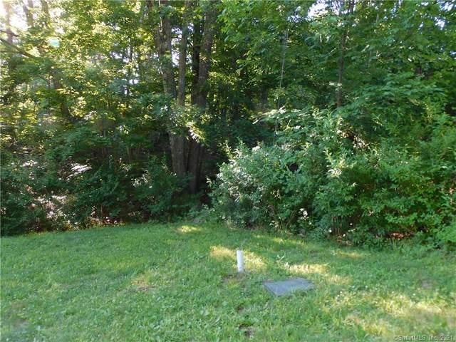 7 Deer Woods Drive, New Milford, CT 06776 (MLS #170373081) :: Spectrum Real Estate Consultants