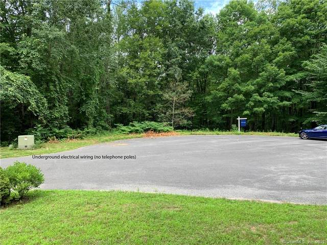 12 Chestnut Lane, Washington, CT 06777 (MLS #170375020) :: Tim Dent Real Estate Group