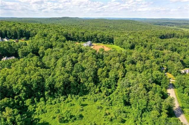 06 Herindeen Landing, Woodstock, CT 06281 (MLS #170400983) :: Spectrum Real Estate Consultants