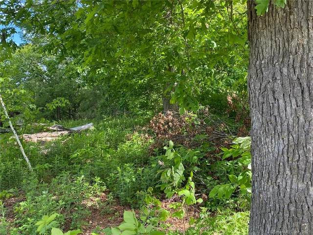 Lot 102 Kilmartin Avenue, Bristol, CT 06010 (MLS #170401877) :: Hergenrother Realty Group Connecticut