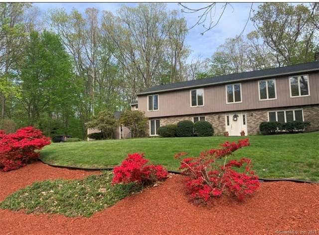 95 Ridgeview Circle, Guilford, CT 06437 (MLS #170406946) :: Linda Edelwich Company Agents on Main