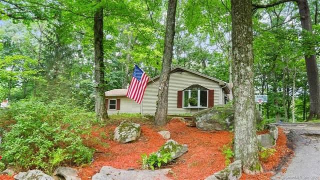 364 Candlewood Lake Road N, New Milford, CT 06776 (MLS #170418725) :: GEN Next Real Estate