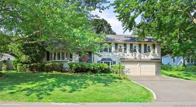 113 Daves Lane, Fairfield, CT 06890 (MLS #170419096) :: GEN Next Real Estate