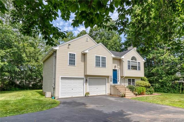 46 Wilcox Place, Branford, CT 06405 (MLS #170425106) :: Linda Edelwich Company Agents on Main