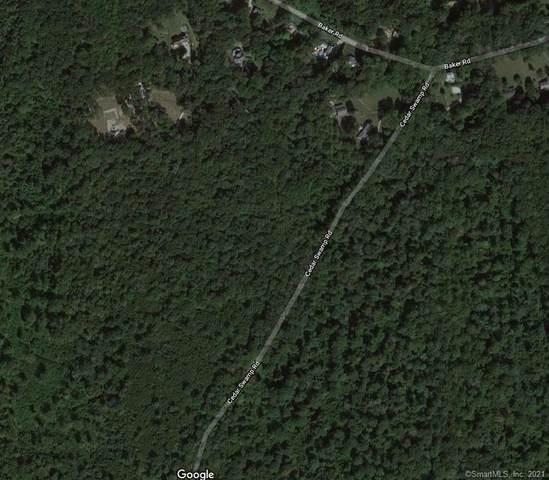 0 Cedar Swamp Rd. Road, Chester, CT 06412 (MLS #170425110) :: Coldwell Banker Premiere Realtors