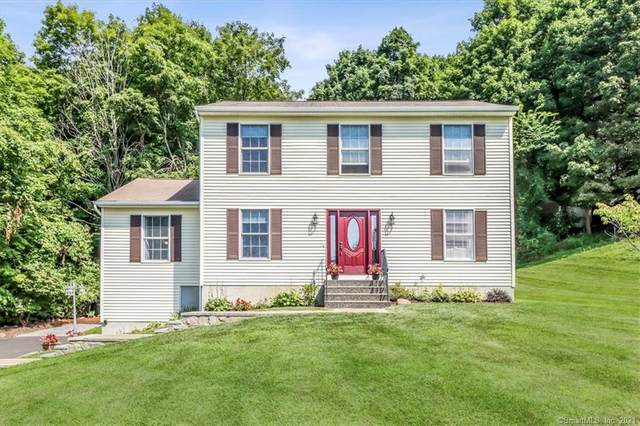 233 Franklin Street Extension, Danbury, CT 06811 (MLS #170425287) :: Linda Edelwich Company Agents on Main