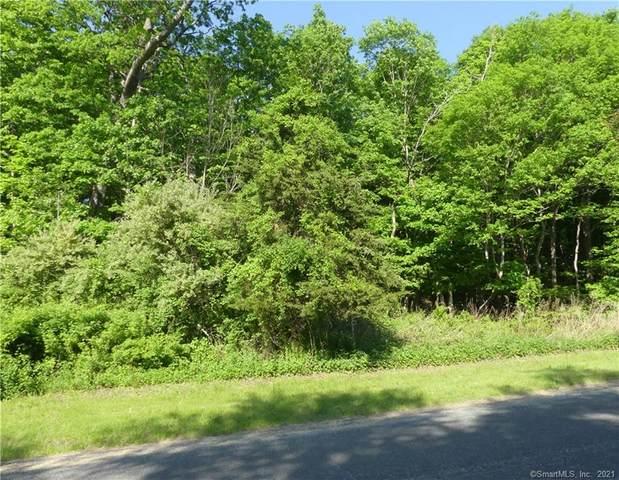 5 Ashford Lane, Newtown, CT 06470 (MLS #170440508) :: Michael & Associates Premium Properties | MAPP TEAM