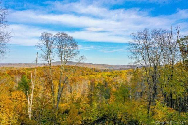430432 Long Mountain Road, New Milford, CT 06776 (MLS #170107066) :: The Higgins Group - The CT Home Finder