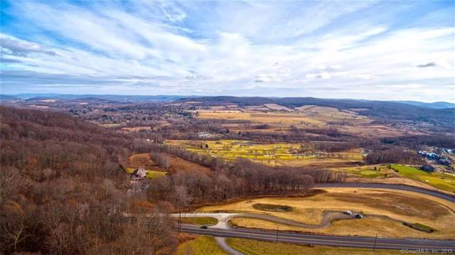5028 Route 44, Amenia, NY 12501 (MLS #170148321) :: The Higgins Group - The CT Home Finder