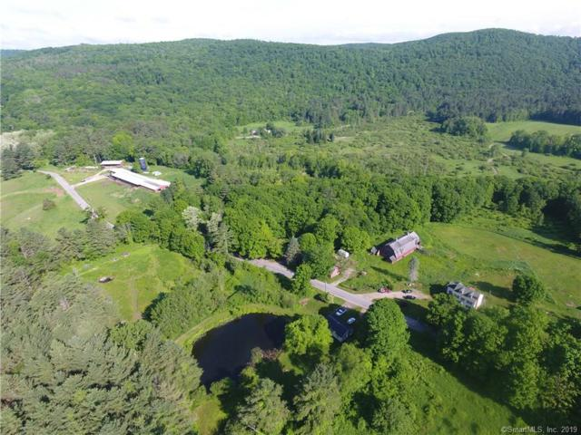 39 Hautboy Hill Road, Cornwall, CT 06796 (MLS #170153577) :: Hergenrother Realty Group Connecticut