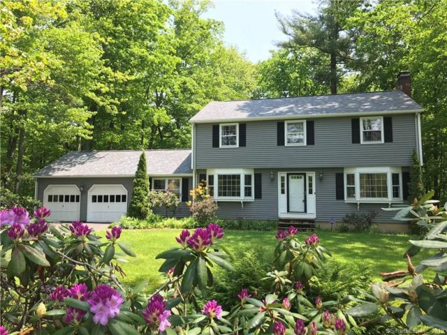 160 South Road, Hartland, CT 06027 (MLS #170180996) :: The Higgins Group - The CT Home Finder