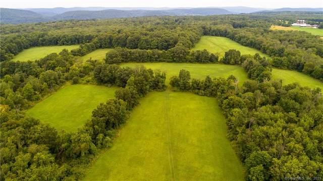 37 Popple Swamp Road, Washington, CT 06794 (MLS #170225301) :: Tim Dent Real Estate Group